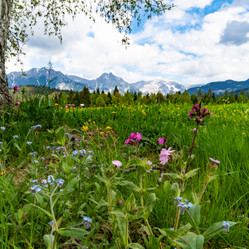 The Olympiaregion Seefeld – a paradise for every outdoor sports.